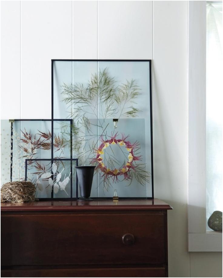Modern-Way-To-Display-Pressed-Flowers
