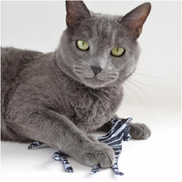 Top 10 Hilariously Fun DIY Catnip Toys | Top Inspired