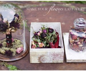 Top 10 DIY's For Preserving And Displaying Dried Flowers