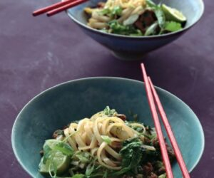 Top 10 Best Chinese Dinner Recipes