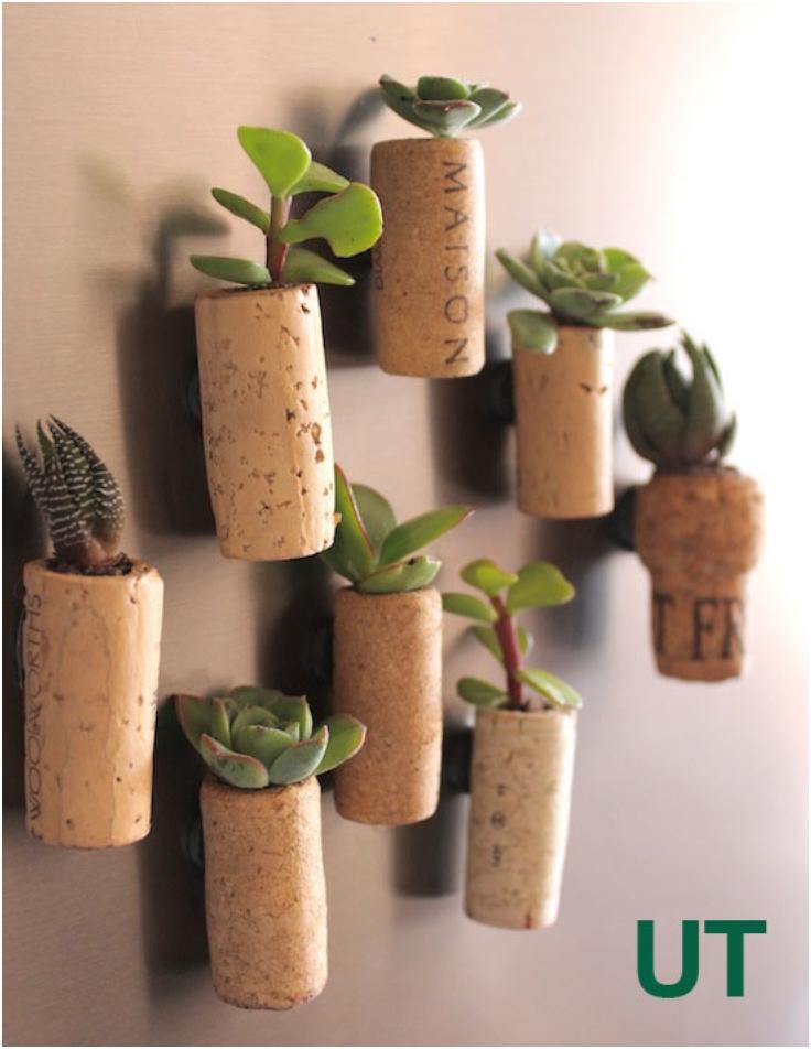 Cork-Planters