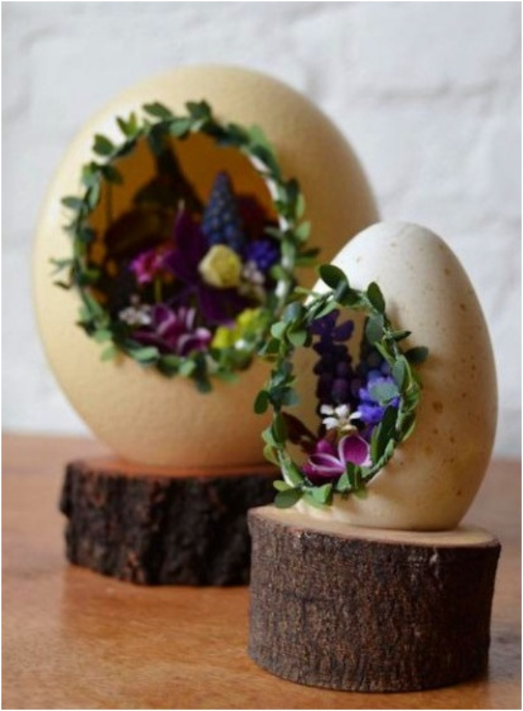 Egg-Shell-Mini-Garden