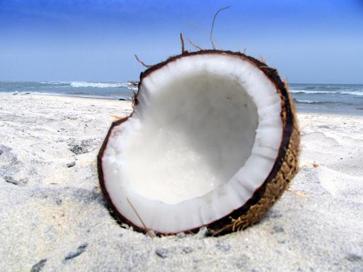 Пол кокоса