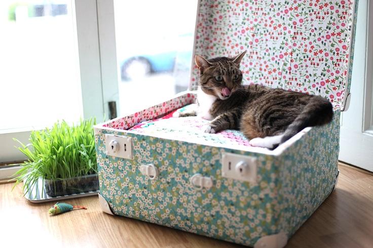 DIY-Vintage-Suitcase-Pet-Bed