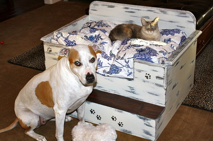 Homemade dog or cat beds