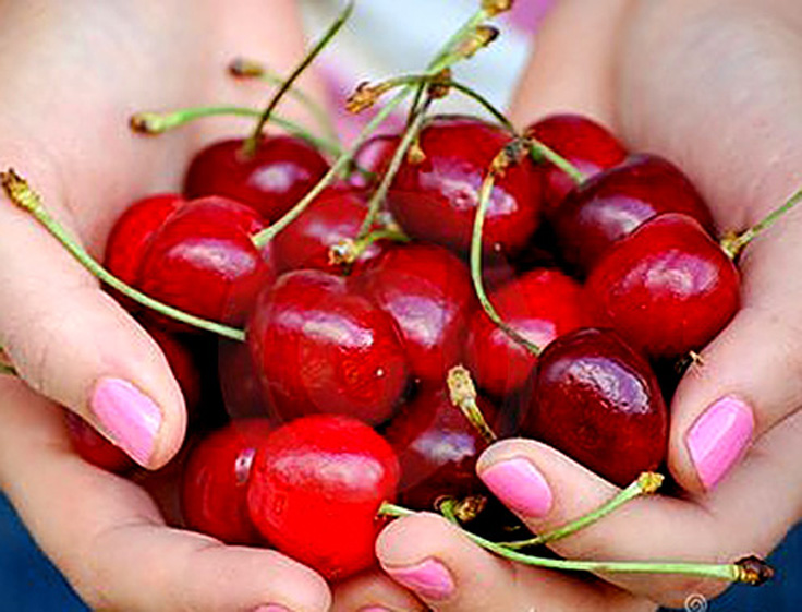 Top 10 Friendly Fruits For Diabetics