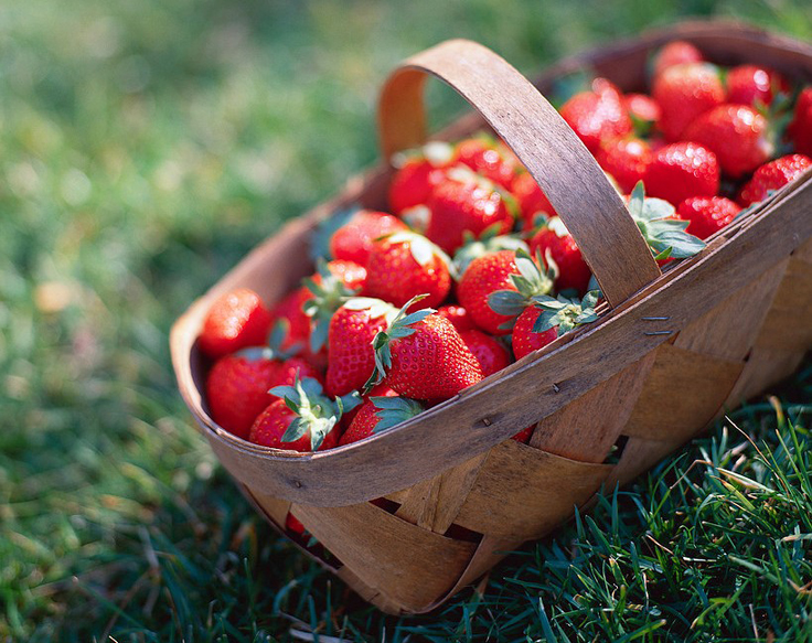 Top-10-friendly-fruits-for-diabetics_10