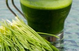 Top 10 Reasons To Start Your Day With Water Grass Juice | Top Inspired