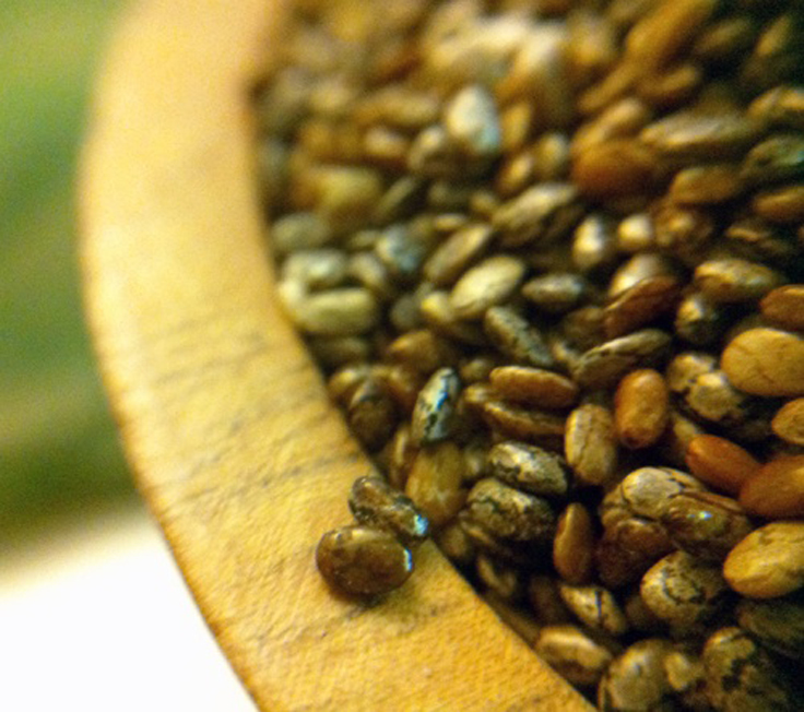 Top-10-reasons-to-use-chia-seeds-daily_08
