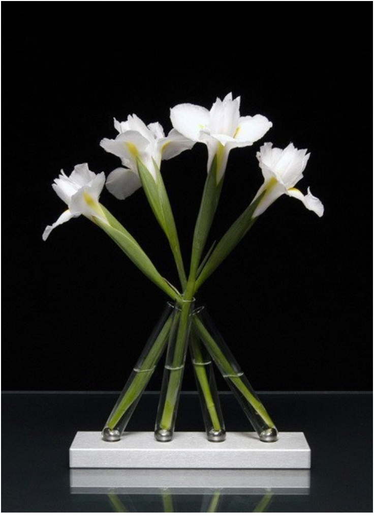 Adaptable Test Tube Vase