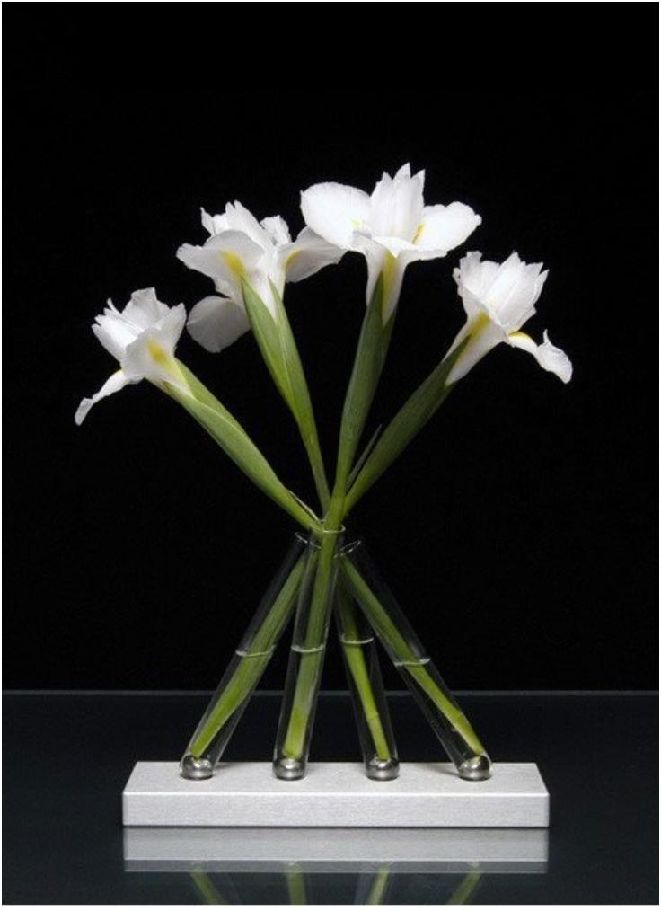 Top 10 Artful DIY Test Tube Vases | Top Inspired