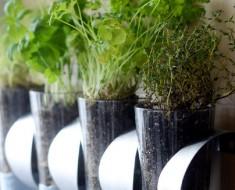 Make a Ridiculously Cheap Herb Garden Using an Ikea Doo-Dad