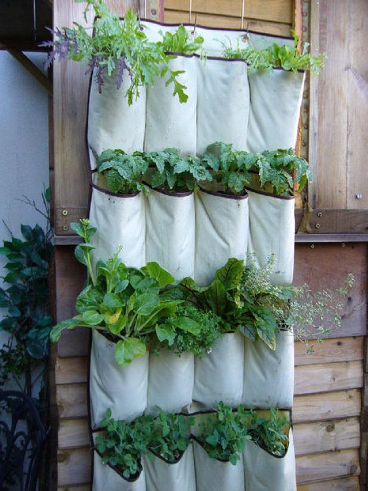 Do It Yourself Home Design: Top 10 DIY Clever Gardening Tricks