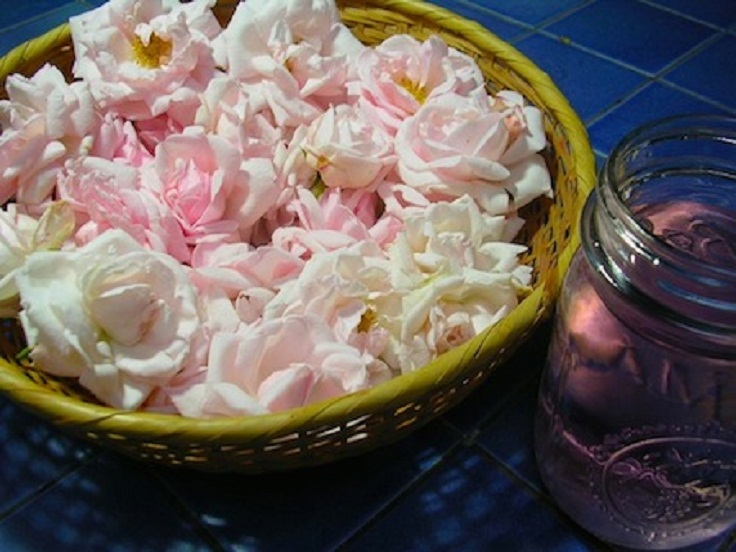 Top 10 Ways To Use Rosewater