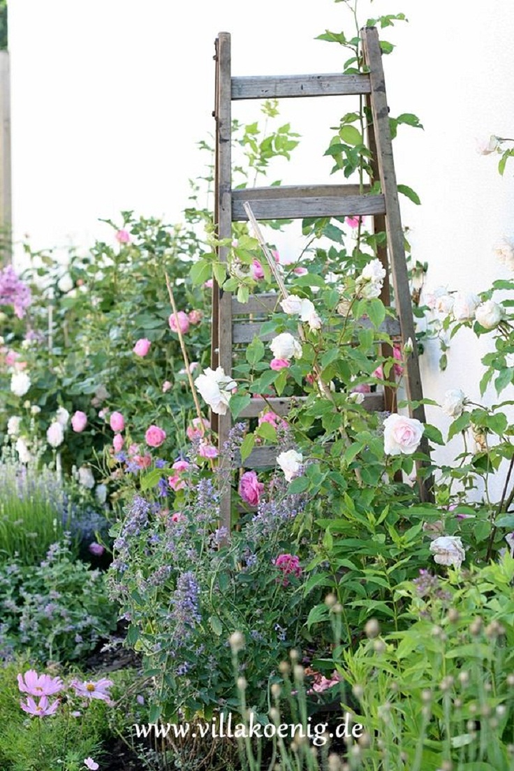 Vintage-Ladder-Outdoor-Garden