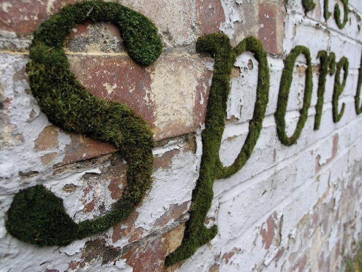 grow-your-own-MOSS-GRAFFITI