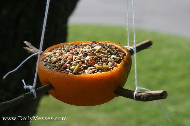 orange-bird-feeder-hanging