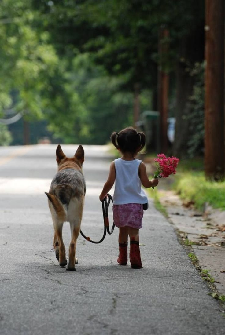 Taking-A-Walk