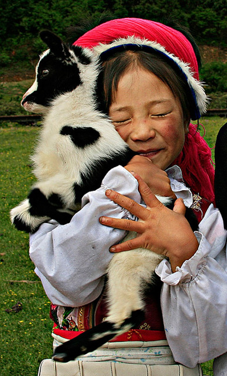 goat-hug