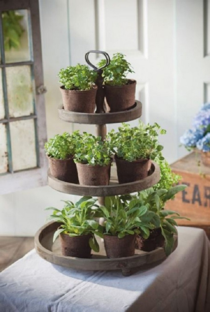 Top 10 DIY Indoor Garden Ideas
