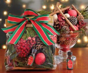 Top 10 DIY Christmas Potpourri