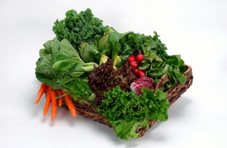 Top 10 Most Important Nutrients Every Woman Needs