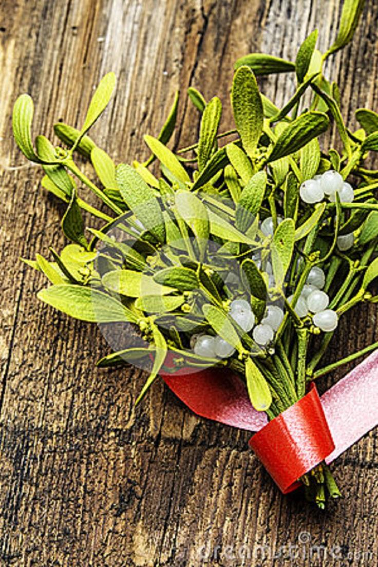 mistletoe-herb
