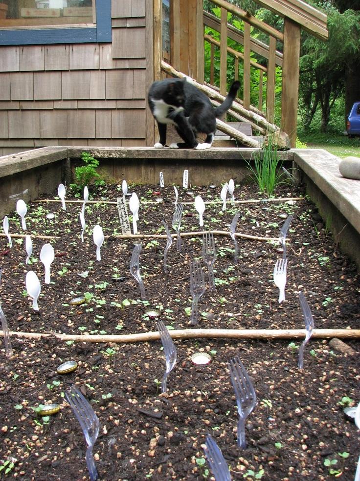 protect-your-garden
