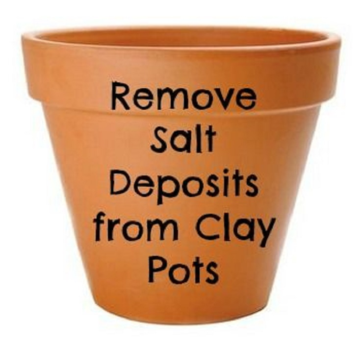 remove-salt-from-clay-pots