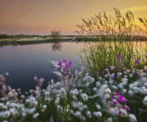 Top 10 Russian Landscape Photographers