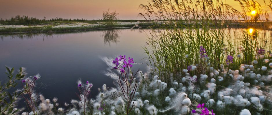 TOP 10 Russian Landscape Photographers | Top Inspired