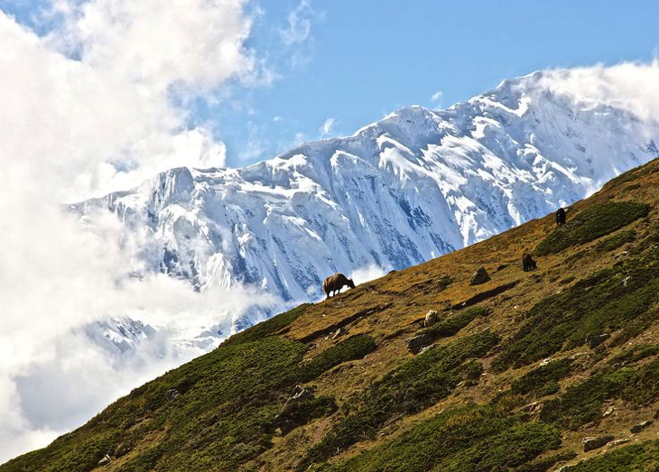 Top 10 Most Popular Himalayan Trekking Routes | Top Inspired