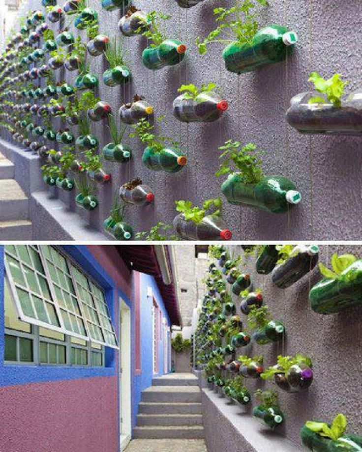 Top 10 Cool Vertical Gardening Ideas Top Inspired