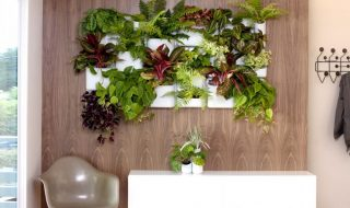 Top 10 Cool Vertical Gardening Ideas | Top Inspired