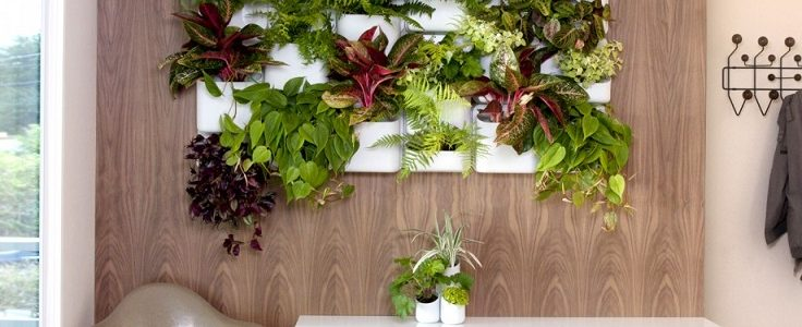 Top 10 Cool Vertical Gardening Ideas | Top Inspired