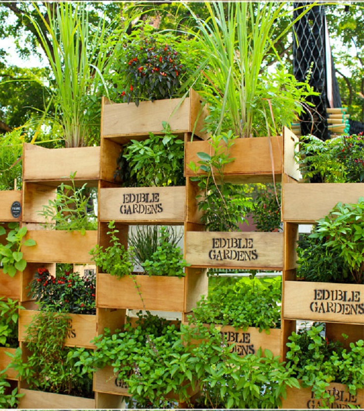 Top 10 cool vertical gardening ideas top inspired for Vertical garden designs