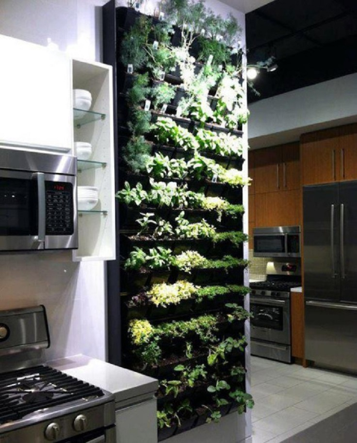 9-vertical-indoor-herb-garden-idea