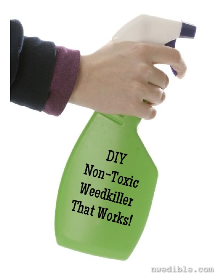 Non-Toxic-Weedkiller-That-Works