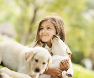 TOP 10 Reasons Why You Should Get Your Child a Dog