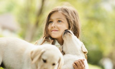 TOP 10 Reasons Why You Should Get Your Child a Dog | Top Inspired