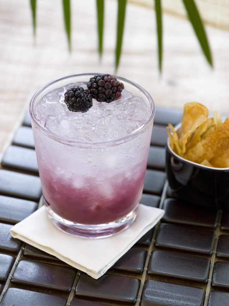 blackberry cocktail? Yes, please! For this recipe you need blackberry ...
