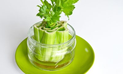 TOP 10 Foods You Can Regrow From Kitchen Scraps | Top Inspired