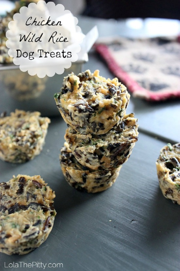 Top 10 Simple Dog Treat Recipes