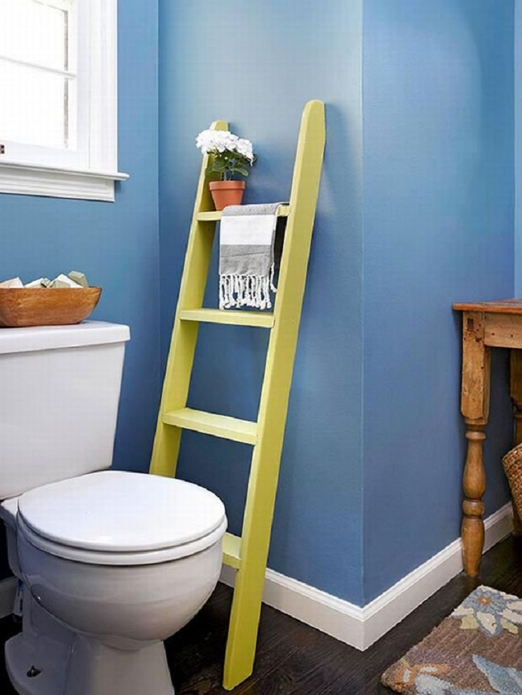 ladder-in-the-toilet