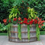 wine-barrel-planter-150x150