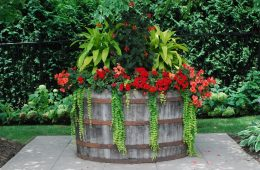 Top 10 Creative Ways To Reuse Wine Barrels | Top Inspired