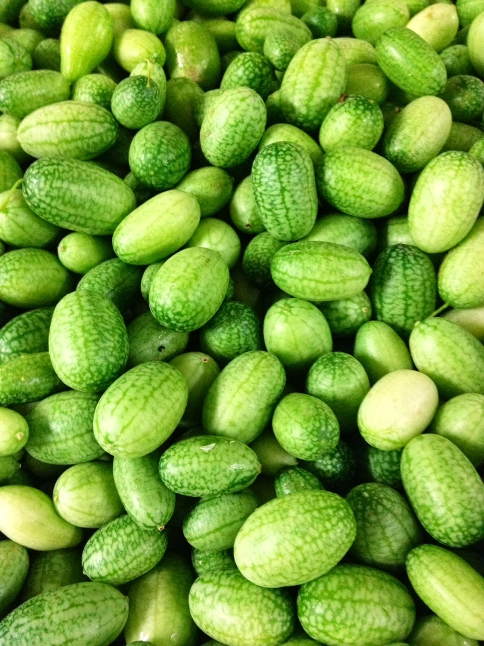 Cucamelons-taste-of-cucumbers-and-lime