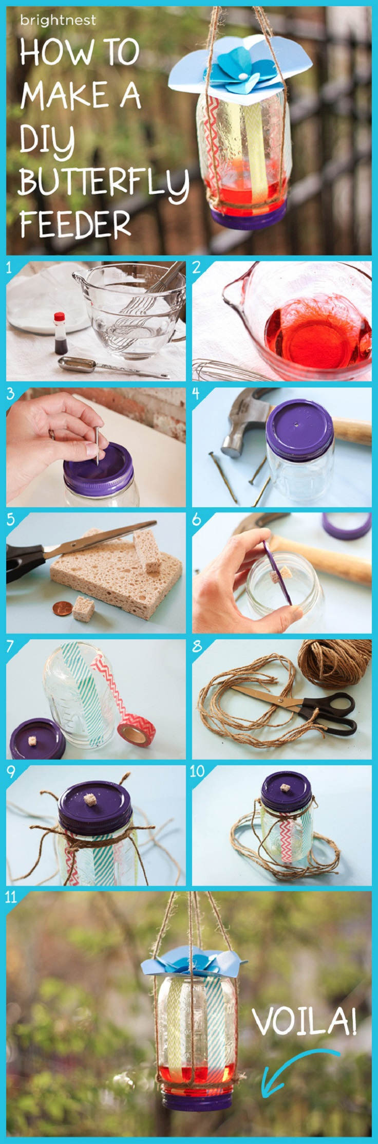 DIY-Butterfly-Feeder-in-6-Simple-Steps