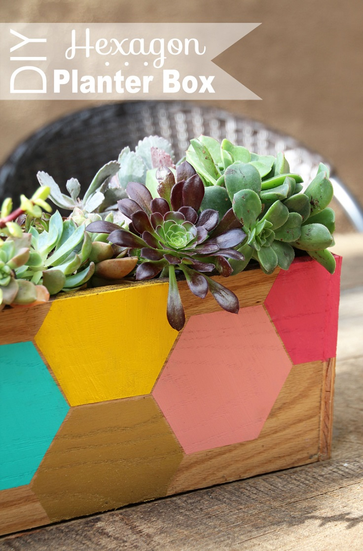 DIY-Hexagon-Succulent-Planter-Box