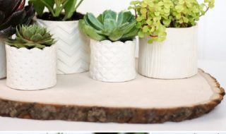DIY-Stamped-Clay-Succulent-Pots